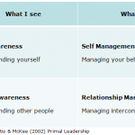 The Relationship Between Social Intelligence and Emotional Intelligence